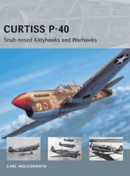 AVG 11: Curtiss P-40 – Snub-nosed Kittyhawks and Warhawks